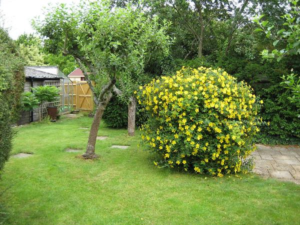 Claypits Garden