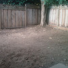 The yard seems so much bigger...