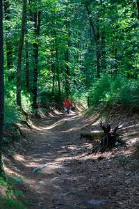 Promo Woods-3418