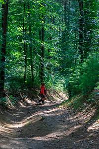 Promo Woods 3421