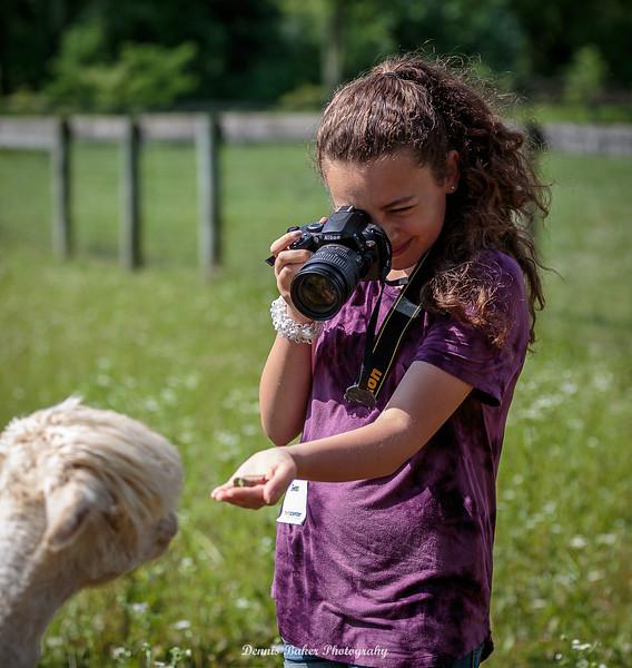 Alpaca Farm_020