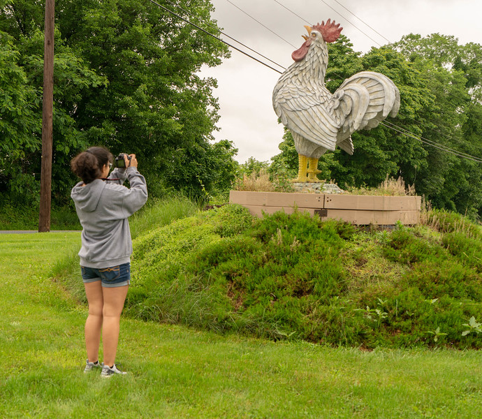 Mikayla and Chicken-34