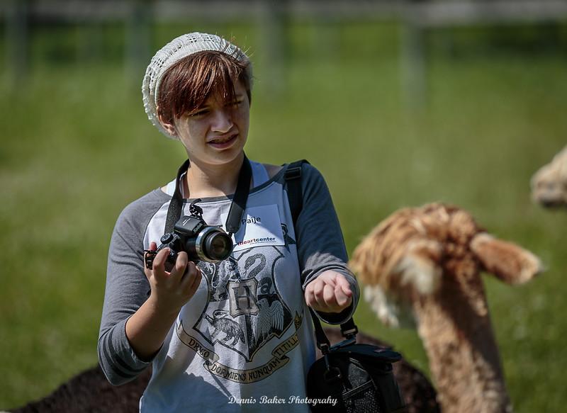 Alpaca Farm_047