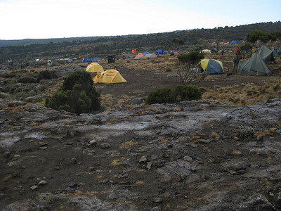 Camp Shira (Day 2): There were about 150 registered trekkors at this camp plus about 3 to 4 support people for each trekkor.   This made for a lot of people and a lot of tents.   This photo shows just one of several camping areas.