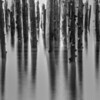 Columbia River pier abstract.