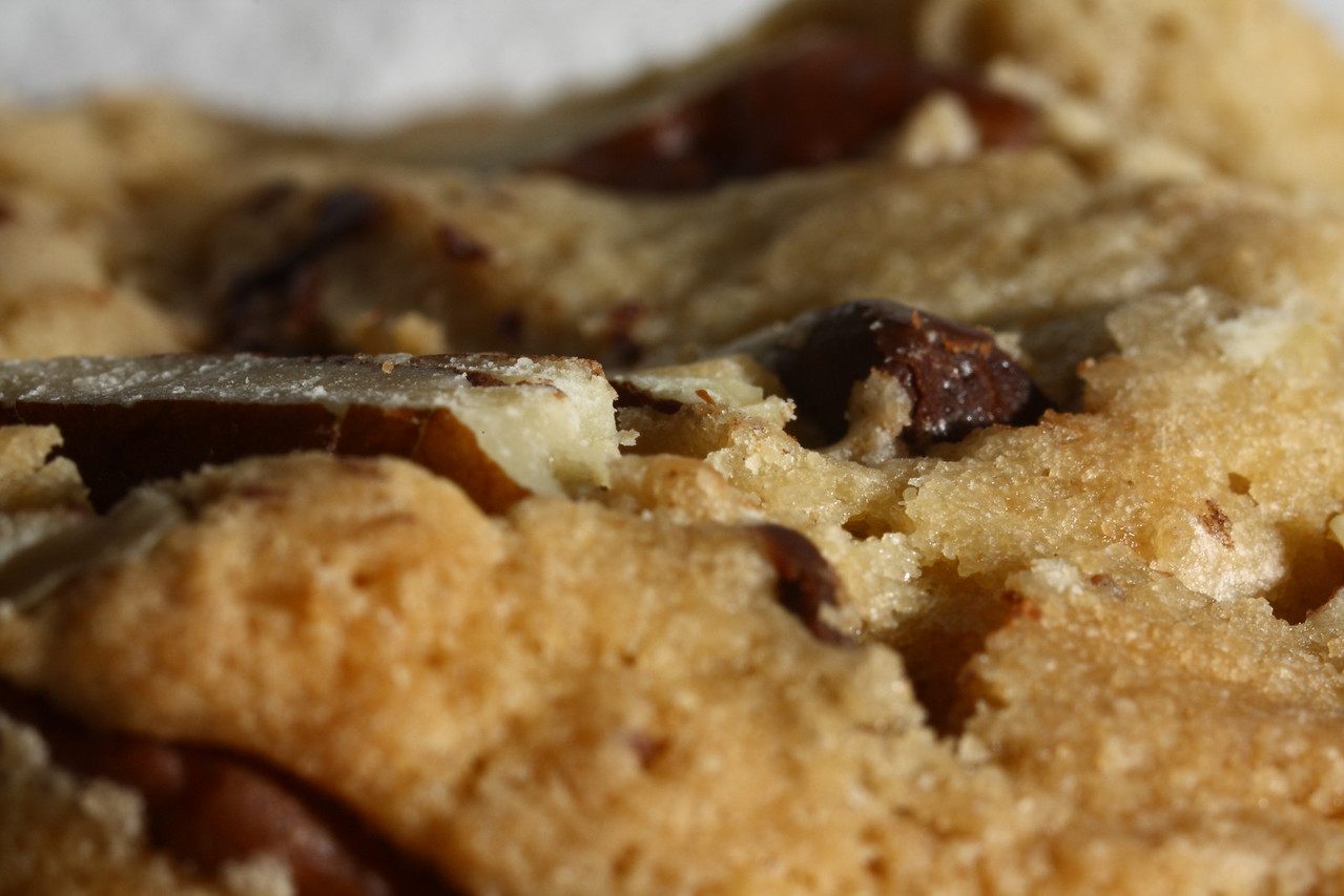 Close up of a Pepperidge Farm's Chesapeake cookie.  Taken with a Canon XSi and Tamron 70-300 VC lens with Kenko extension tubes (68mm).