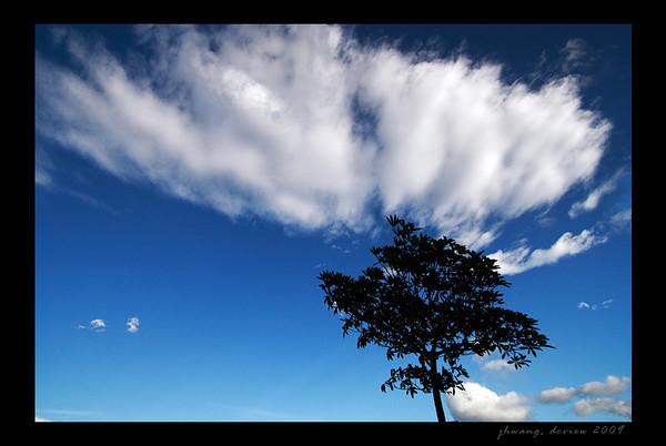 cloud2009