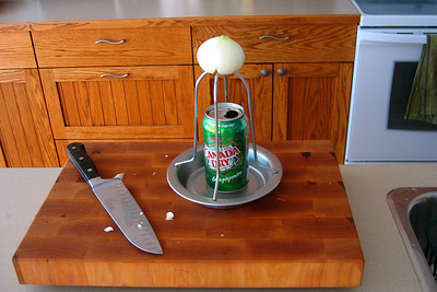 Cly stuffed half a can of ginger ale with garlic, thyme, and bay leaves and carved an onion to fit the top of the chicken grilling stand.