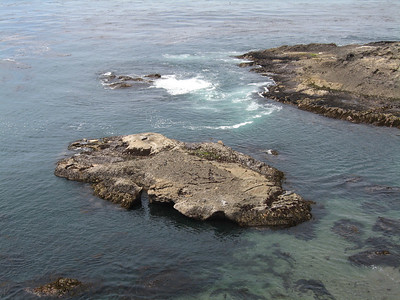 Coastal Central California 2006-Dick and Joan's pics