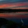 Egret at Sunset - Huntington Beach State Park
