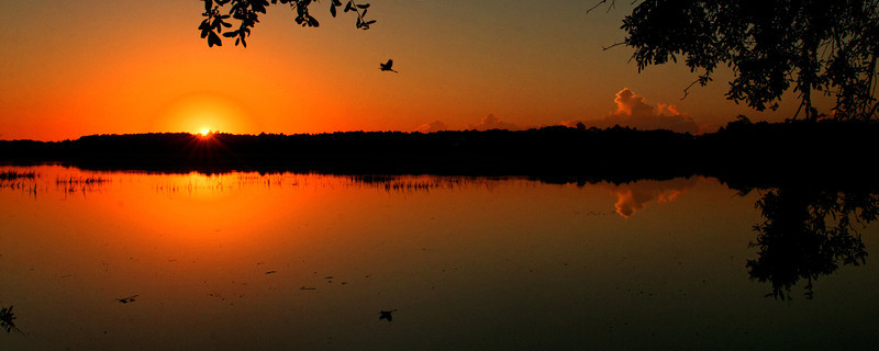Sunrise at Huntington Beach State Park