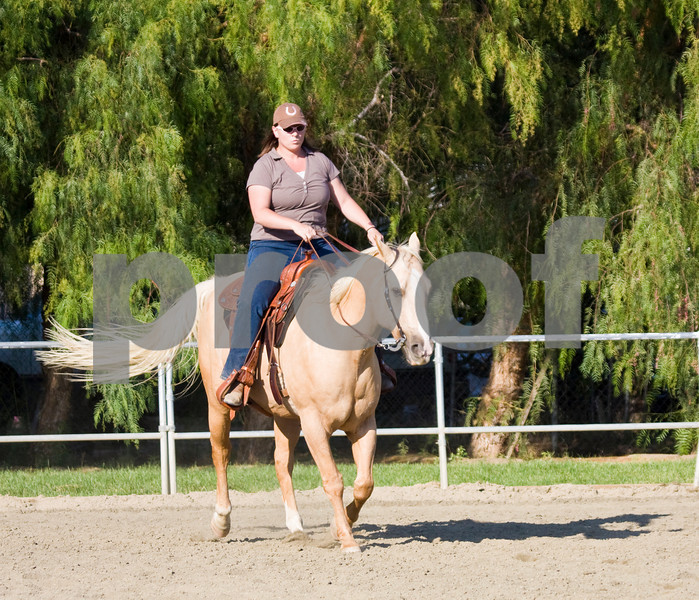 Jennifer and Beau..this little horse belongs to Pam, he is just a pretty as he looks, inside and out.