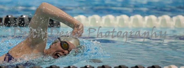 01-10-2016 Swim & dive-11