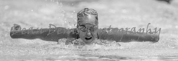 01-10-2016 Swim & dive-34