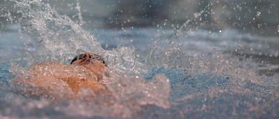 01-10-2016 Swim & dive-5