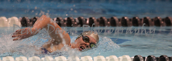 01-10-2016 Swim & dive-12