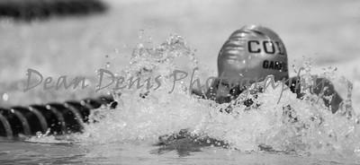 01-10-2016 Swim & dive-7