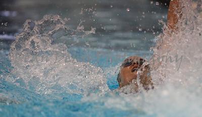 01-10-2016 Swim & dive-1