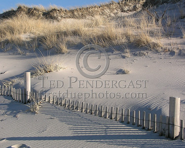 Buried Fence Posts - Christmas Day 2005 - Cold Storage Beach - Dennis,Mass. - Cape Cod