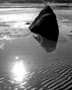 Black & White Bolder On The Tidal Flats - Christmas Day 2005 - Cold Storage Beach - Dennis,Mass. - Cape Cod