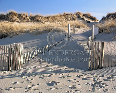 Fences In The Dunes - Christmas Day 2005 - Cold Storage Beach - Dennis,Mass. - Cape Cod