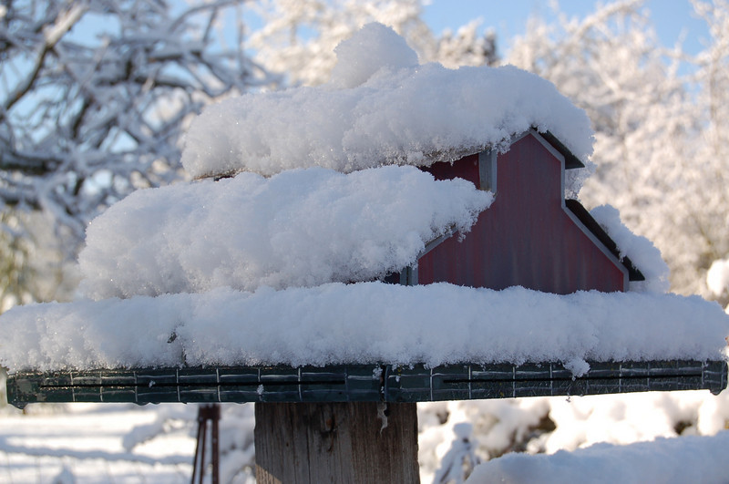 Barn Birdhouse with Snow