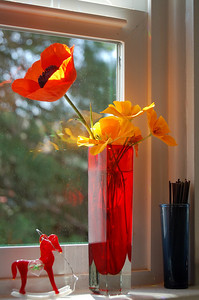 """Oriental and California Poppies. I think I could call this """"The Gold Rush"""" arrangement."""