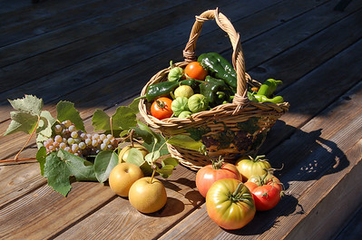 A morning's harvest. Everything in this basket was picked from our garden within one hour on one early late summer morning. To me, this picture is so perfect it almost looks fake.