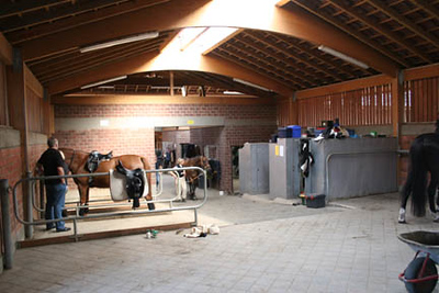 #34 Grooming area at stable for endurance horses