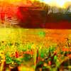 Color Grass