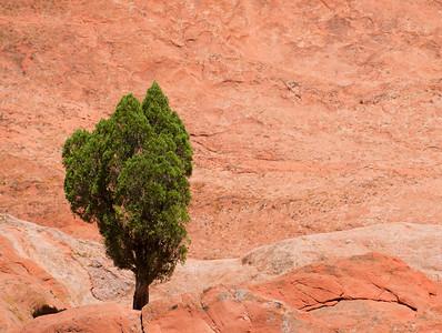 Colorado Springs 20100903 0933