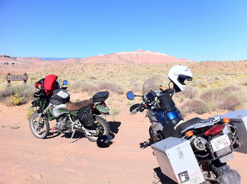 Two of the steeds in Cathedral Valley.