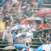 Don Knight/The Herald Bulletin<br /> Colts fans sit through a downpour to watch the Colts practice during camp on Thursday.