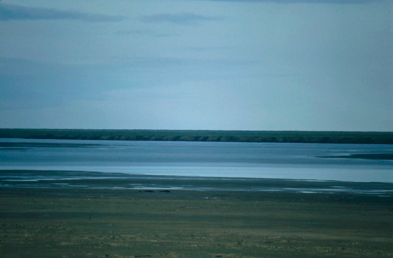 Colville River Delta, north slope Alaska, summer 1987