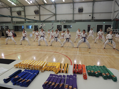 Combat Karate Grading and Course July 2013 022