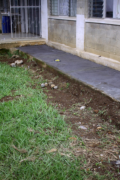 making sidewalks around the hospital and the dorm/house