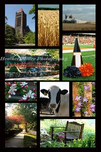 Champaign County Chamber Postcard3