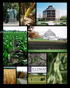 UIUC Crop Sciences comp1