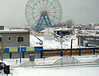 The future site of new Luna Park