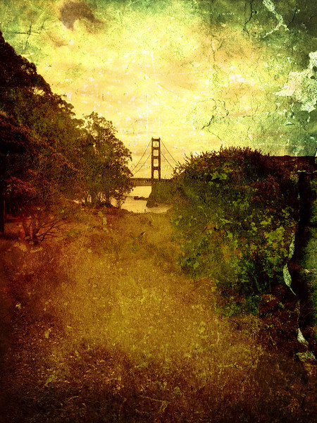 Golden Gate Bridge from Cavalo Point  Photographer's Name: Frank Thom Photographer's City and State: Mill Valley, CA  To vote in favor for this photo, simply add a comment below. You can also share this photo on Facebook and Twitter using the buttons above.