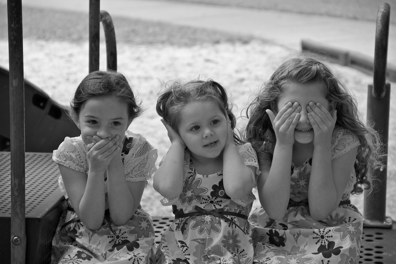 Hear, See and Speak no evil.  Photographer's Name: AnnaMarie Bishop Photographer's City and State: Inverness, FL  To vote in favor for this photo, simply add a comment below. You can also share this photo on Facebook and Twitter using the buttons above.