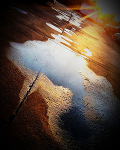 I Can Jump Puddles   Photographer's Name: Warren Verity Photographer's City and State: greeneville, TN  To vote in favor for this photo, simply add a comment below. You can also share this photo on Facebook and Twitter using the buttons above.