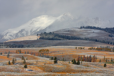 HONORABLE MENTION Snowed hills Yellowstone NP, around Mammoth hot springs submitted by: Nikolay Makarov from US/Russia