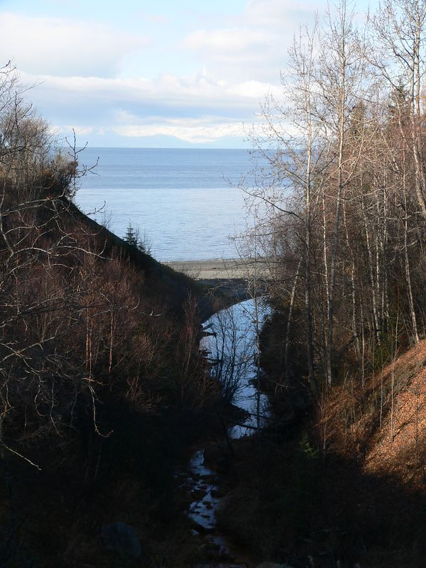 Cook Inlet as seen from Kalifornsky Beach Road south of the City of Kenai