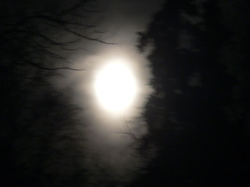 Photographic Lunarcy from Discovery Campground at Captain Cook State Recreation Area