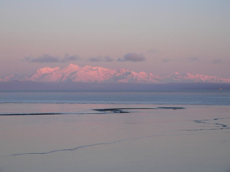 Mud flats, Cook Inlet, and Mt. Spurr