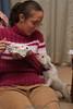 Westie_Puppy-12-11-09-073