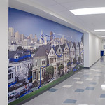 San Francisco Murals for Companies, Corporations, Businesses that want Fine Art images to liven up large spaces!  Company themes can be incorporated into artwork with licensing.  This image has a corporate DNA theme for the company that installed this San Francisco 7 Painted Ladies Fine Art Mural.  This image is an ultra high resolution Gigapixel image that was comprised of multiple images for this high resolution panorama.  The image is printed 10 feet by 20 feet tall.