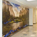 Yosemite National Park Murals for Companies, Corporations, Businesses that want Fine Art images to liven up large spaces.  Company themes can be incorporated into artwork with licensing.  This image has a corporate DNA theme for the company that installed this Yosemite National Park Gates of The Valley, Valley View image of El Capitan and Bridalveil Falls