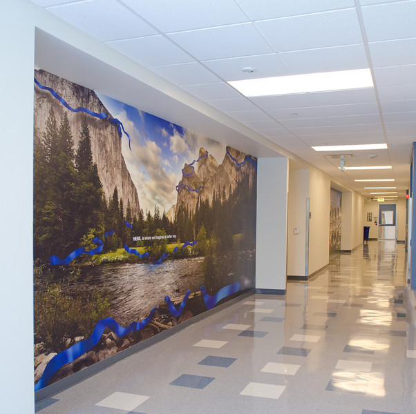 Yosemite Valley View Mural.  Approximately 8' x 20'   The 7 Painted ladies are further down the hall.